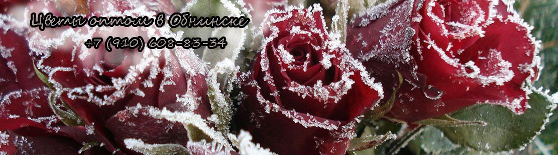 Салон цветов и подарков на десятинной, магазин цветы мира вакансии
